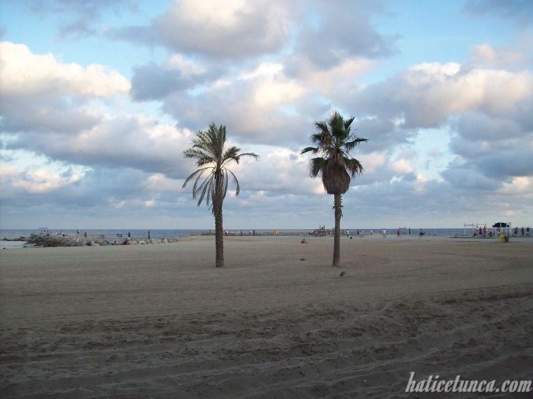 Barcelonata