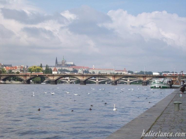 Palacky ve Jirásek Köprüleri