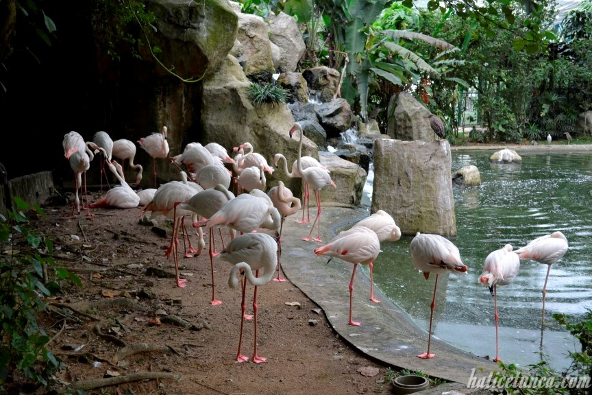 KL Kuş Parkı