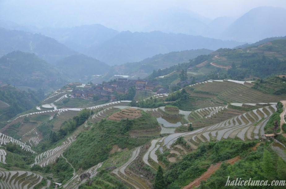 Longji Pirinç Terasları