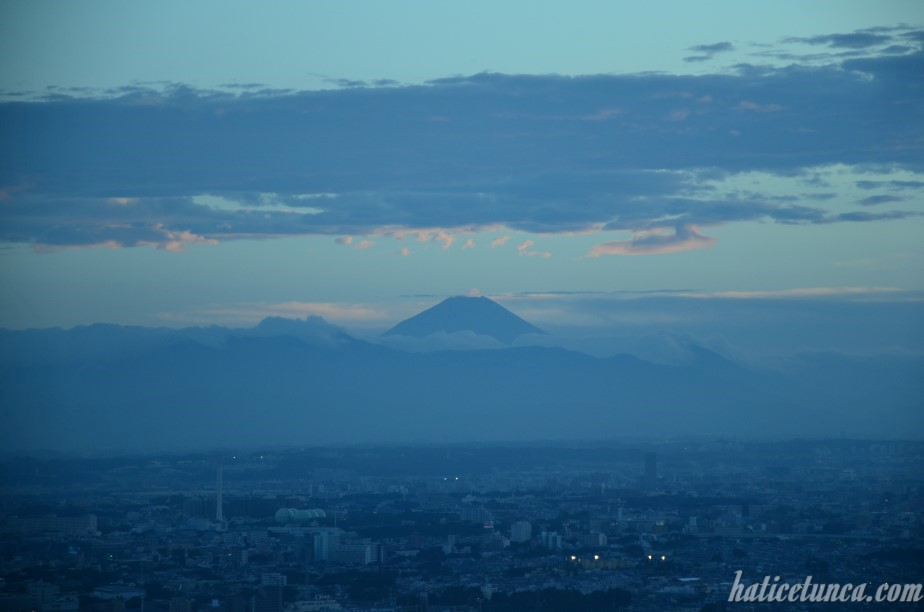 Mount Fuji from Tokyo Metropolitan Government Building