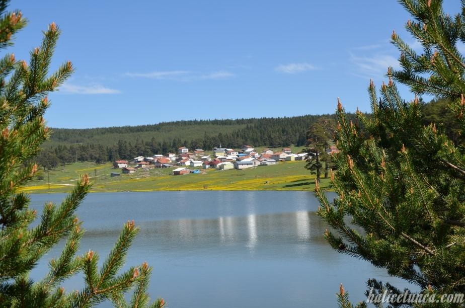 Sarıalan Göleti