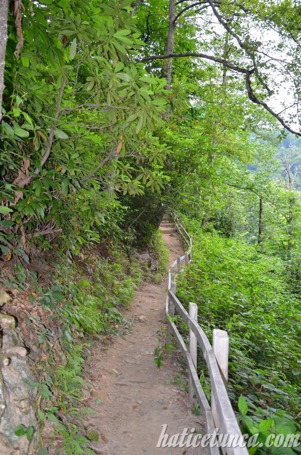 Mençuna Şelalesi'ne yürüyüş yolu