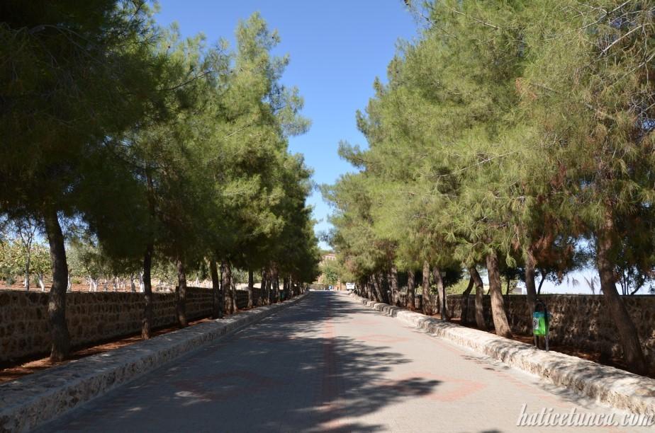 Mor Gabriel Manastırı'na gidiş yolu